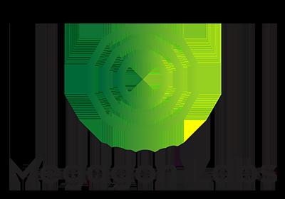 Megagon Labs